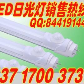 厂家 LED人体感应日光灯管 T8 红外感应灯管 地下停车场照明灯管