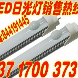 红外人体感应LED日光灯管 T8LED感应LED灯具 双亮1.2米18W日光灯