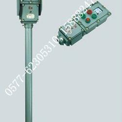 NLZ-A2D2K1G防水防尘防腐操作柱 三防操作柱