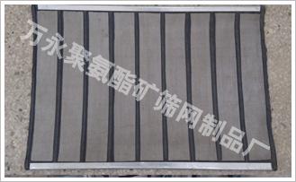 专业洗煤网|洗煤复合网|煤矿复合网|洗煤网厂家图片价格规格