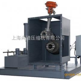 透平膨胀机(天然气液化,工艺气体等)