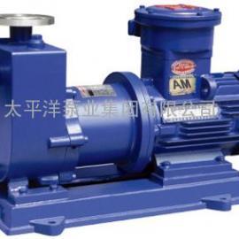 ZCQ100-65-200磁力泵