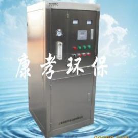 中型臭氧发生器(100g~500g)