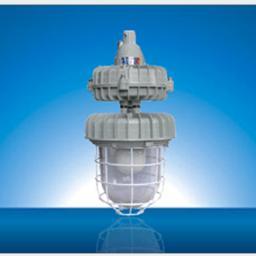可带防护网罩RDB83-W55J带应急防爆无极灯