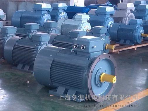 同步电机tycx280s-6-45kw 稀土永磁电机厂家