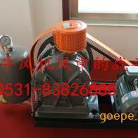 专业生产各种型号罗茨鼓风机、罗茨真空泵
