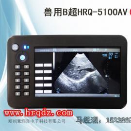 猪羊专业B超 准确率高 B超机 青岛供应羊用测孕仪