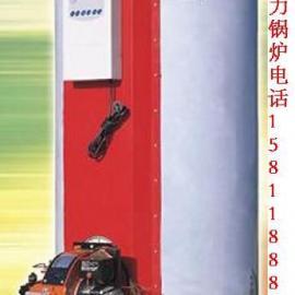 燃煤(柴)热水锅炉