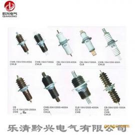 黔兴厂家CWB-10/400A CWB-10KV铜导体穿墙套管
