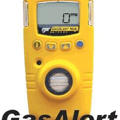 GAXT-H硫化氢检测仪GAXT-H加拿大BW