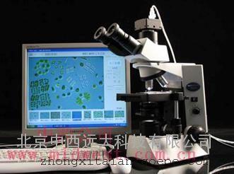 藻类智能鉴定计数仪  库号:M397111