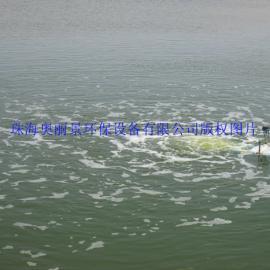 湖泊池塘水处理/强力节能潜水推流曝气机