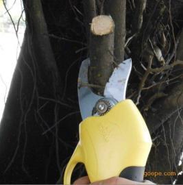 香梨树枝修剪电动剪子、果树电动修枝剪嘉航生产厂家