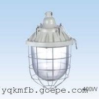 装节能灯防爆灯壳,节能型防爆灯