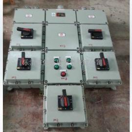 订做BXX52-12K防爆检修动力箱(IIC DIP)