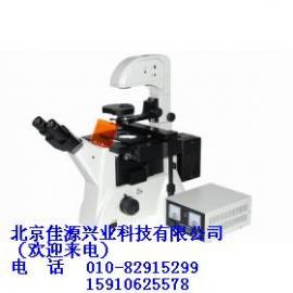 XD200-FL倒置荧光显微镜