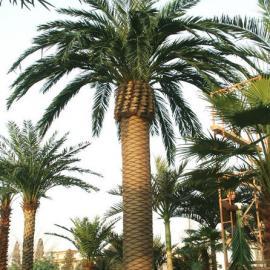 『广信』仿真椰子树