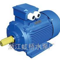 YE2,YE3电机泵、高效电机泵、超高效节能泵