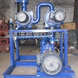 JZJ2S 150罗茨水环真空机组
