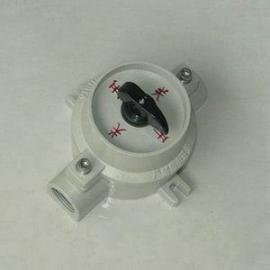铸铝防爆开关SW-10 防爆照明开关