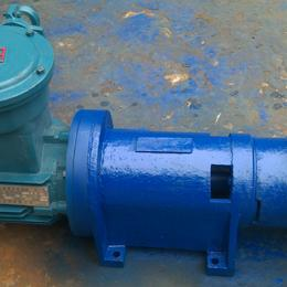2BV防爆型水环式真空泵
