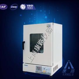 DHG智能立式鼓风干燥箱 智能干燥箱/厂家自销/年终大促/金牌售后