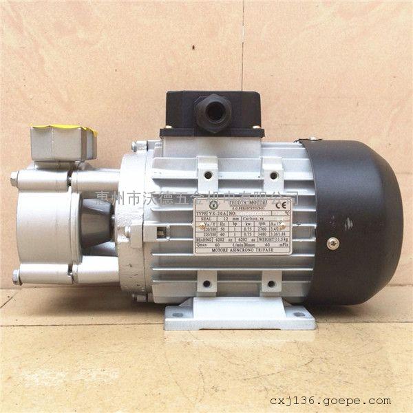 TECOTA MOTORI高温油泵YS-30A热水泵