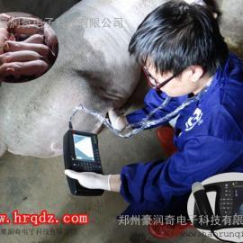 山东省淄博市专业牛用猪用羊用B超技术培训