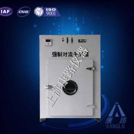 101-2HA强制对流干燥箱,300度干燥箱