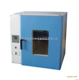 电热恒温鼓风干燥箱 试验室烘箱价格 真空干燥箱工作原理