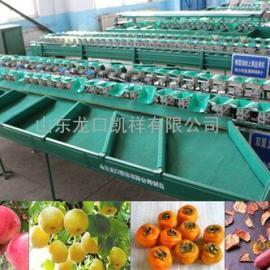 土豆选果机专门用来分选土豆个头大小,土豆重量分选设备