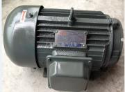 现货台湾QUNLI电机 液压电机 YQB100L1-4