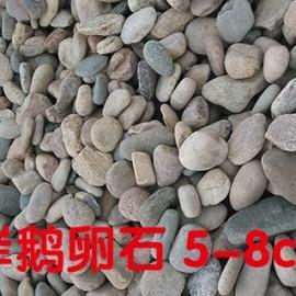 滤料鹅卵石大连变压器鹅卵石大量供应天然鹅卵石