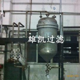 金属工艺师严谨过滤器、雷尼镍触媒过滤器、金属滤芯式过滤器