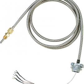 CFTF-000-RTD-2-60-2热电阻 美国omega热电阻