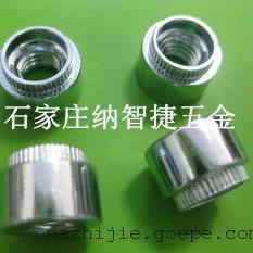 北京涨铆螺母专业生产厂家|不锈钢涨铆螺母ZS-M4-2