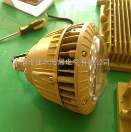 CZ0873/1-LED30W-B支架式LED防爆灯