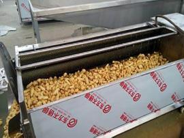 毛辊土豆清洗机 蔬菜去皮清洗机