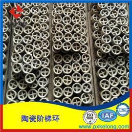 硫酸装置专用陶瓷阶梯环可耐酸耐腐蚀耐高温瓷质阶梯环DN50型号