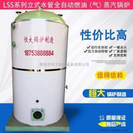 立式液化气低压蒸汽锅炉 全自动运行一键点火 蔬菜杀青蒸汽锅炉