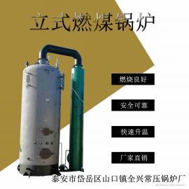 小型立式燃煤锅炉 食用菌蒸菌锅炉