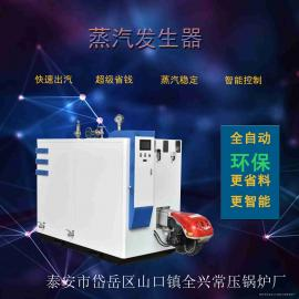 燃油燃�庹舭l器 -燃�庹羝��l生器 小型蒸汽�l生器