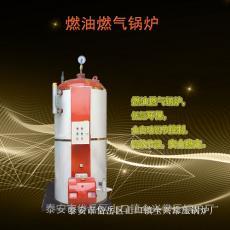 �|���r廉燃�庹羝���t 小型食品加工用立式蒸汽��t
