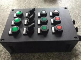 FZC-S-A2D2K1G水泵旁防水防尘防腐操作柱