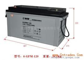 �腿A�U酸蓄�池6-GFM-65 12V65AH/10HR�y控密封式