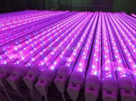 T8分体led植物灯温室大棚培育专用方案效果明显 t8led植物灯