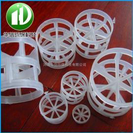 鲍尔环PP填料 高品质塑料鲍尔环填料 耐腐蚀喷淋塔鲍尔环
