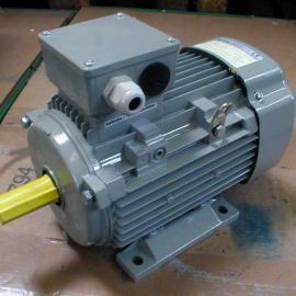 德国AC-MOTOREN原装正品感应电机