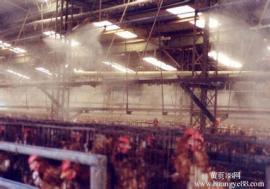 养殖场喷雾除臭设备安装 喷雾降温消毒