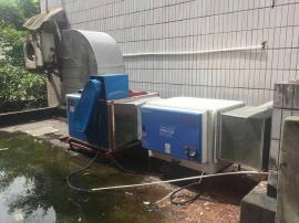 用于饭店工厂食堂餐馆有效果的低空油烟净化器12000风量